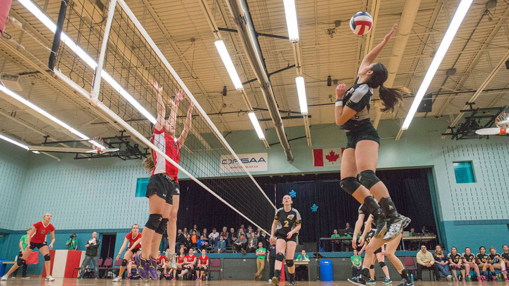 OFSAA Girls Volleyball