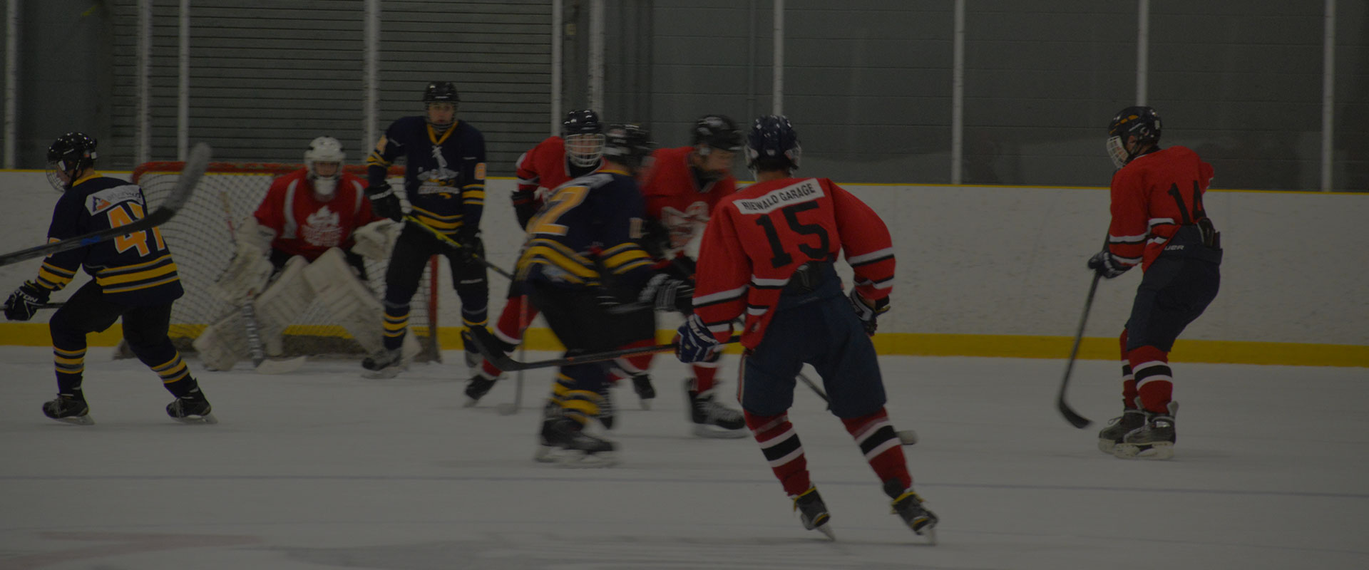 Web-Slider_Hockey