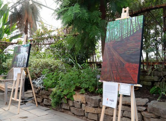 Preserving environment through art