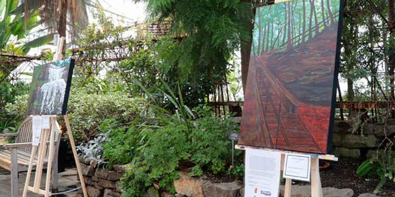 Preserving environment through art